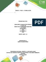 Anexos - Guía de actividades y rúbrica de evaluación - Fase 4 - Formulación (2).docx