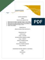 INFORME LABORATORIO QUIMICA INORGANICA.pdf