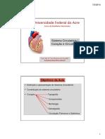 coracao.pdf