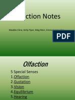 Olfaction PPT
