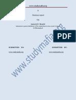 MECH Maglev Train PDF