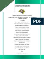 Seminario 5 Fisiopatolofia-final