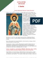 vietile-sfintilor-ortodoxiei-06-sinaxarul-lunii-iunie