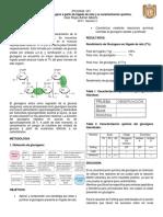 Obtención de glucogeno a partir de higado de rata y su caracterizacion quimica