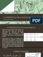 CONSISTENCIA DE LOS SUELOS