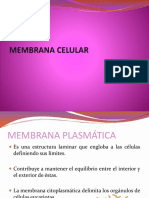 Membrana Celular y Transporte (1)