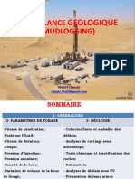 Suivi géologique des forages_2018.pptx