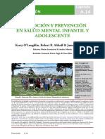 A.14 Prevención Spanish 2018