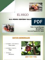 Cultivos de Higo en Venezuela