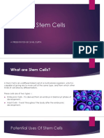 Future in Stem Cells