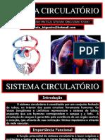 07 Sistema Circulatório