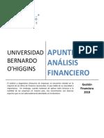 Apunte Analisis Financiero