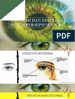 Anatomi Dan Fisiologi Sistem Persepsi Sensori