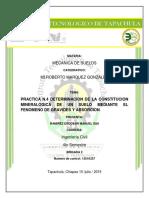 DETERMINACION_DE_LA_CONSTITUCION_MINERAL.pdf
