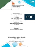 Trabajo Final Compilado de Expresion Genetica_151009_190