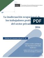 TRABAJADORES PROFESIONALES DEL SECTOR PRIVADO