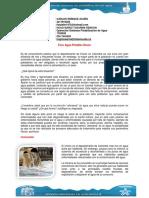 387550435-Foro-Agua-Potable-Choco.docx
