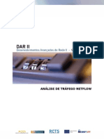 Netflow_DARII-1.1