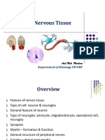 Histology of Nervous Tissue_16!10!18