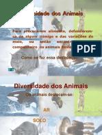 diversidade-nos-animais-1193220576867536-3