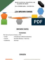 Browm Swiss