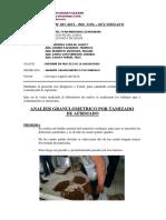Informe n.001 - Tamizado