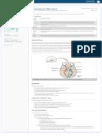 Cranial Nerve II_ Optic Nerve _ FRCEM Success