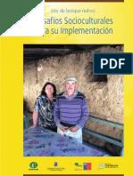 Desafios socioculturales implementacion.pdf