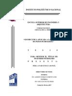 Geomecánica Aplicada a La Perforación de Pozos Petroleros (1)