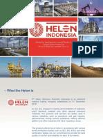 Helon Internusa Flamindo (Company Profile) - Copy