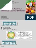 APRESENTAÇÃO APROVEITAMENTO DE RESÍDUOS DE FRUTAS