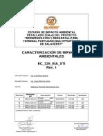 CAP IX Caracterizacion de Impactos