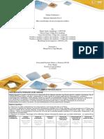 Anexo 3 Formato de Entrega - Paso 4 (1) (1)
