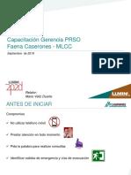 Capacitación PRSO. MLCC.09-2019.pptx