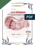 306234991-Pae-de-Neonatologia-doc.doc