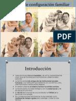 3.1 Proceso de Configuración Familiar (1)