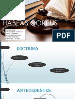 Habeas Corpus Fin (1)