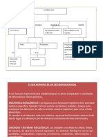 Clase 3sujeto Es Biopsicosocial