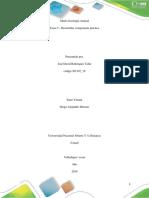 Informes Practica 1,2,y 3 Morfifisiologia Animal
