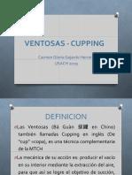 VENTOSAS2019 .pdf