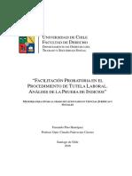 Facilitación-probatoria-en-el-procedimiento-de-tutela-laboral-análisis-de-la-prueba-de-indicios.pdf