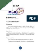 Sub Proyecto Multi Gabinete y Algoritmica
