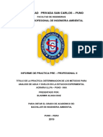 Bladimir Informe II Inia