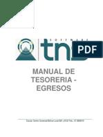 Manual Tesoreria
