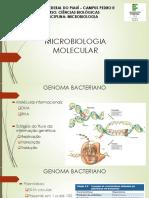 Microbiologia Molecular