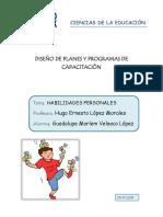 Diseño de Planes y Programas de Capacitaciòn Habilidaes Personales