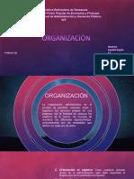 Organizacion Administrativa.pptx