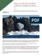 Farallon Islands Mice Plague Guardian Nov 2019