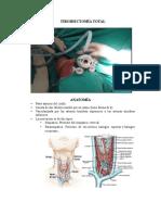Tiroidectomía Total