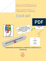 Discapacidad Intelectual Infografia